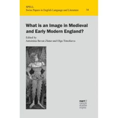 What is an Image in Medieval and Early Modern England? eBook