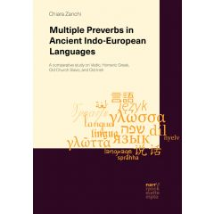 Multiple Preverbs in Ancient Indo-European Languages eBook