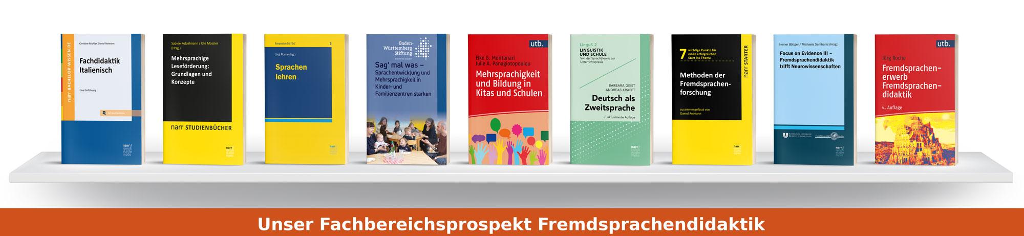 Fachbereichsprospekt Fremdsprachendidaktik